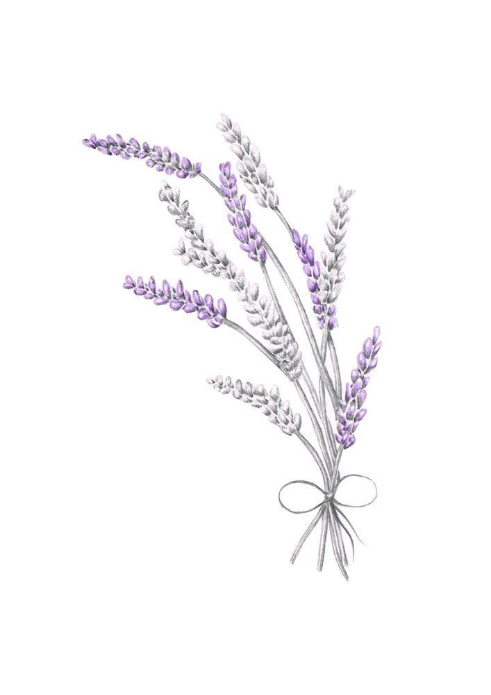 Pin Von Rauberskinder Auf Aquarell Blumen Schmetterlinge