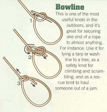 bowline knot - good for hanging things.