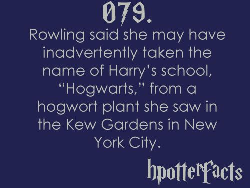 "Harry Potter Facts #079:    Rowling said she may have inadvertently taken the name of Harry's school ""Hogwarts"", from a hogwort plant she saw in the Kew Gardens in New York City."