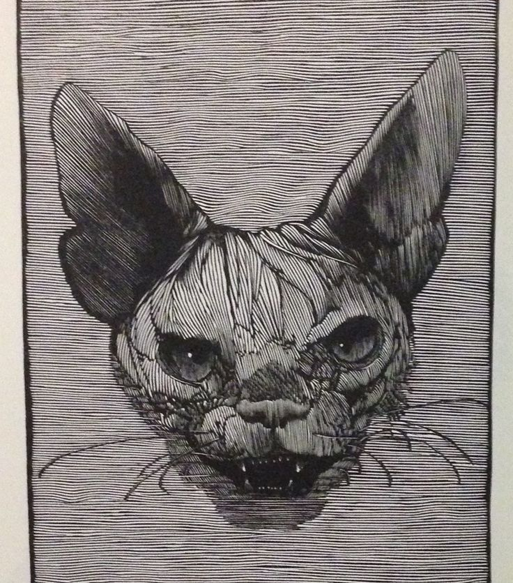 Wood engraving of the Cheshire Cat by Barry Moser, from the Pennyroyal Press' Alice's Adventures in Wonderland: