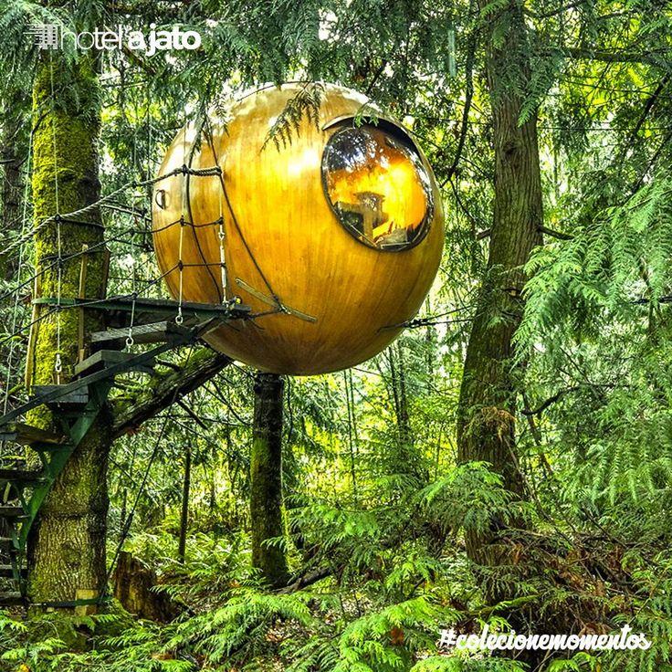 Já pensou em passar uma noite como os pássaros na copa das arvores cercado pela floresta? FREE SPIRIT SPHERES te proporciona isso, esse resort proporcionar um local para que as pessoas possam desfrutar de experiências excepcionais ao morar em um ambiente de floresta natural.  Este resort treehouse exclusivo para adultos é aberto todo o ano em uma floresta tropical litoral encantado na Ilha de Vancouver, Colúmbia Britânica, Canadá.  #HotelaJato #ColecioneMomentos #travel #viagem #traveler…