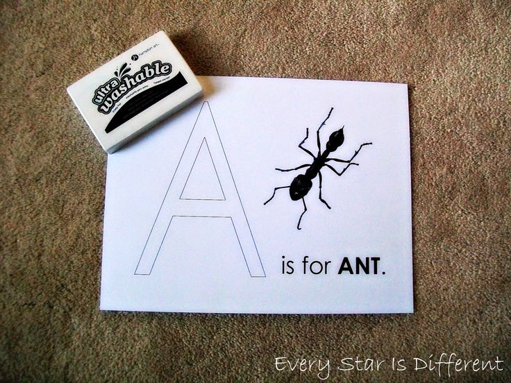 Every Star Is Different: Insect Unit for Tots w/ Free Printables