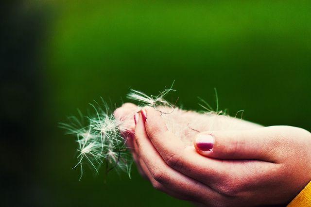 Rimedi naturali per le mani secche e screpolate
