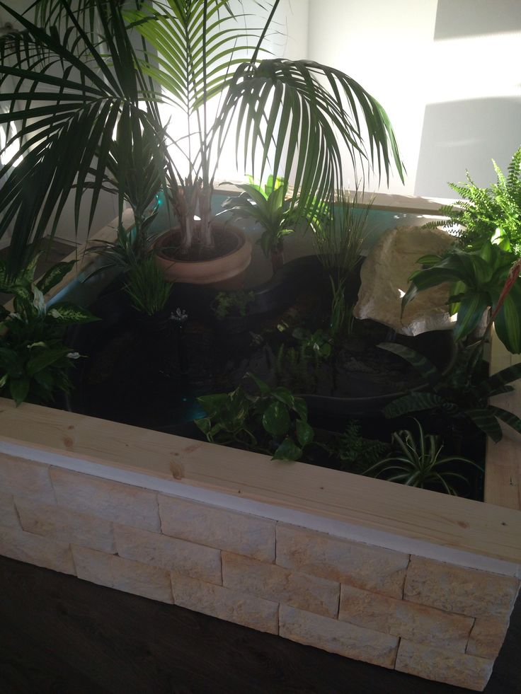 13 best images about indoor pond ideas on pinterest pond for Indoor fish pond ideas