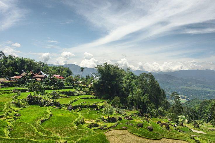 Morning view in Toraja