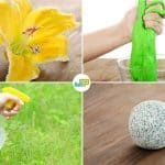 12 Fantastic Uses For Borax: Cleaning, Pest Control and More