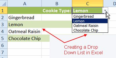 How to Create a Drop Down List in Excel: Creating a Drop Down List in Excel