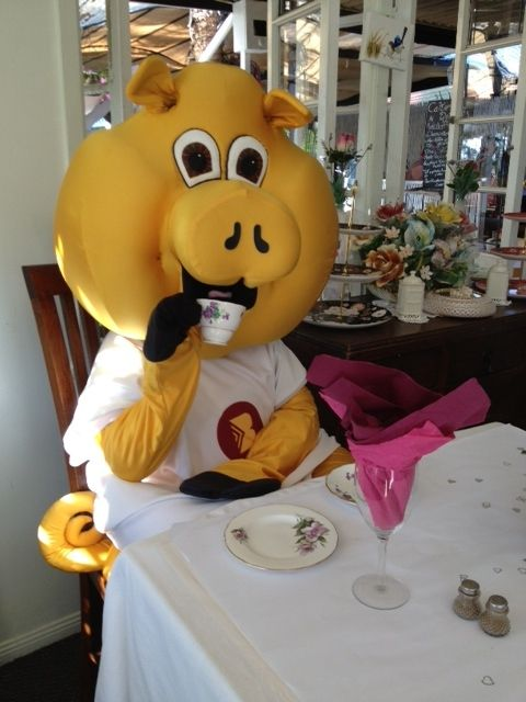 We love to support our local businesses, so today, Piggy decided to have a nice 'cuppa tea' at our local Wishing Well Cafe in Victoria Point... Mmm delicious!