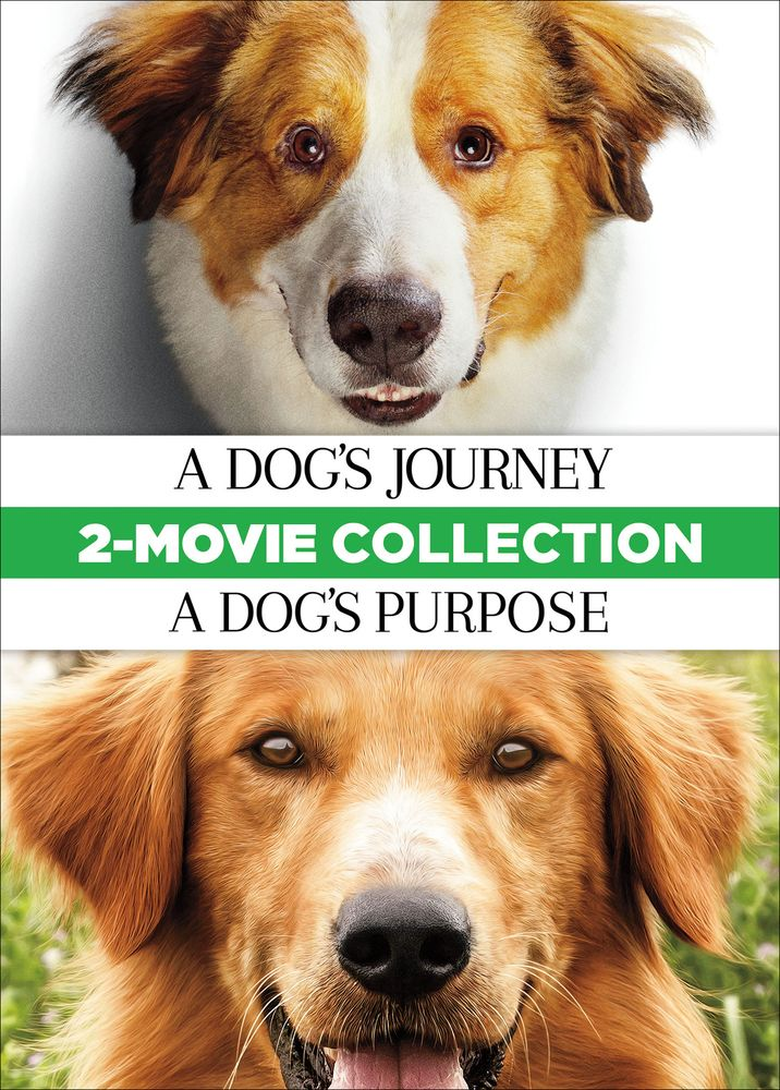 A Dog S Journey A Dog S Purpose 2 Movie Collection Dvd A Dogs