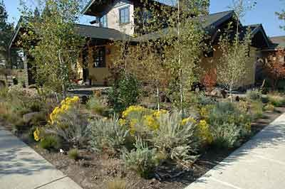 zero landscaping ideas | Xeriscaping in the high desert beautifies the urban landscape while it ...