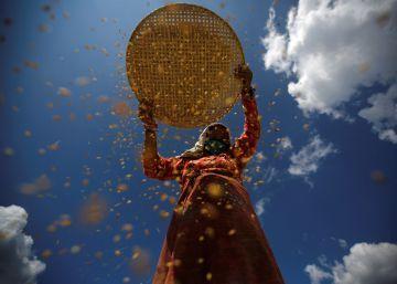 Las mujeres protagonizaron la revolución agraria de la prehistoria