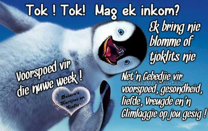 Tok Tok!!