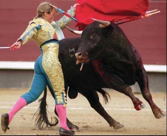 woman bullfighter