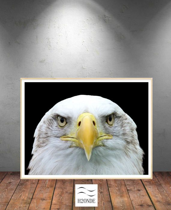 Eagle head digital print download wall art animal by H2ONDE