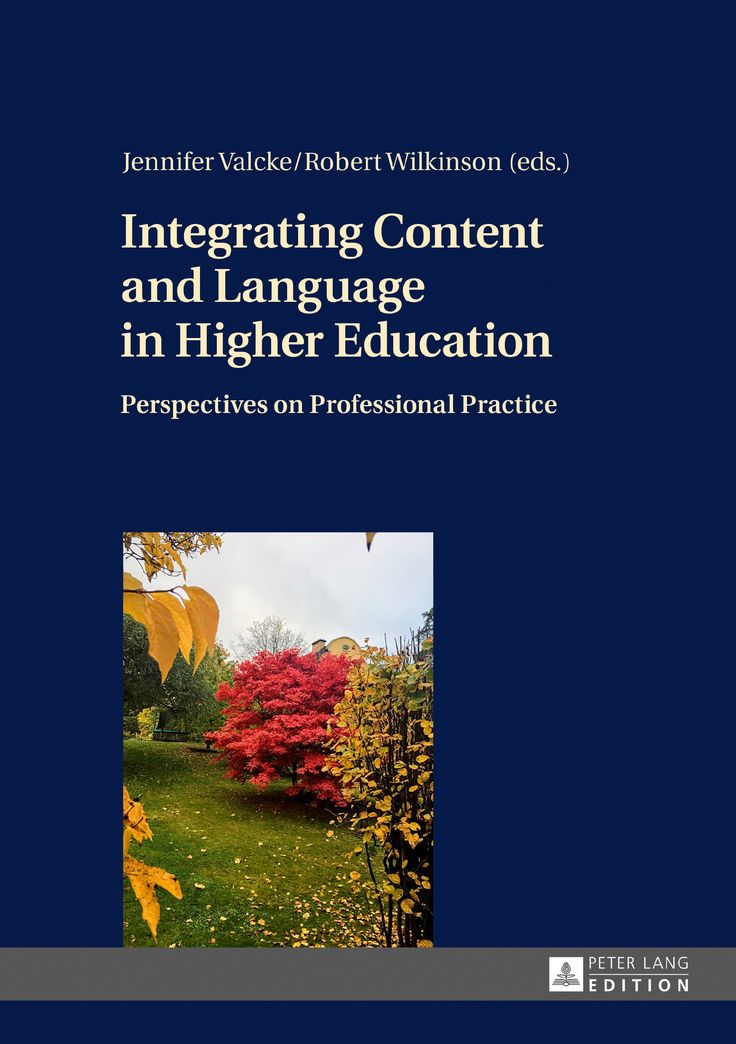 Integrating content and language in higher education : perspectives on professional practice / Jennifer Valcke, Robert Wilkinson (eds.)
