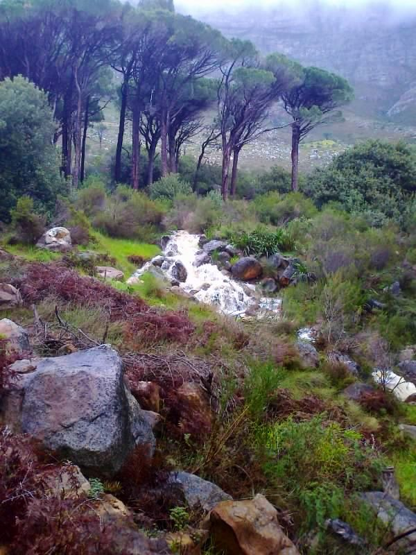 Table Mountain rainy and cold