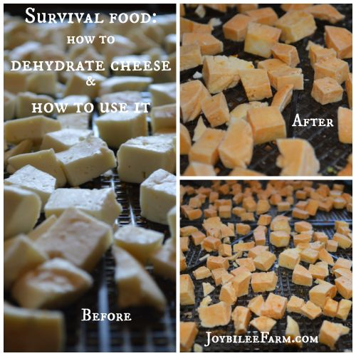 How to Dehydrate Cheese for Long Term StorageAlyssa (Lissii Chan)