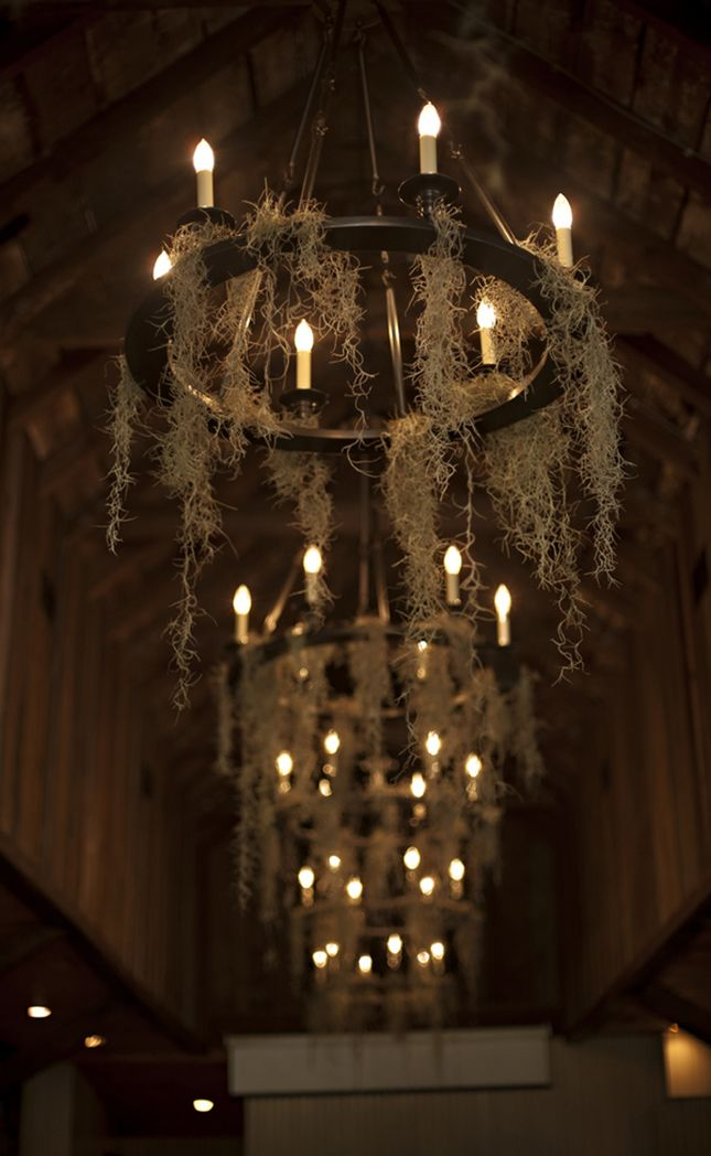 Moss covered chandeliers take your Halloween wedding decor up a notch.