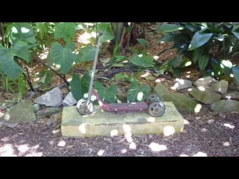 Wendy Whiteley's secret garden..A must visit on the shores of Sydney Harbour. - YouTube