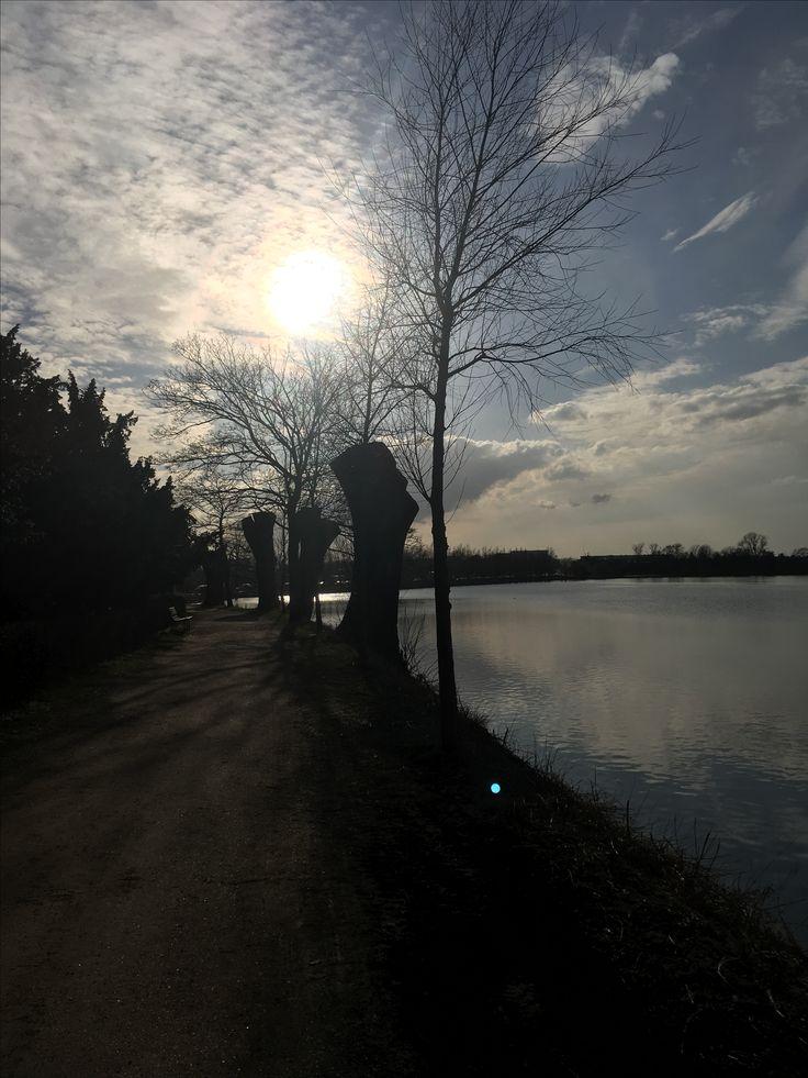 Damhussøen #valby #myhood