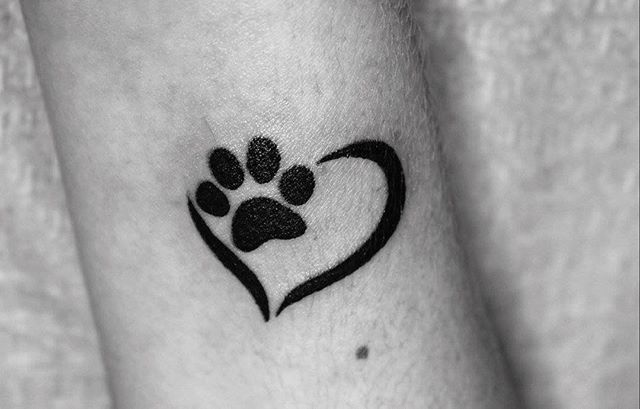 Love your pet  #smalltattoo #tattoo #tattoos #dogtattoo #cattattoo #love #lovetattoo #tattooapprentice #ink #inked