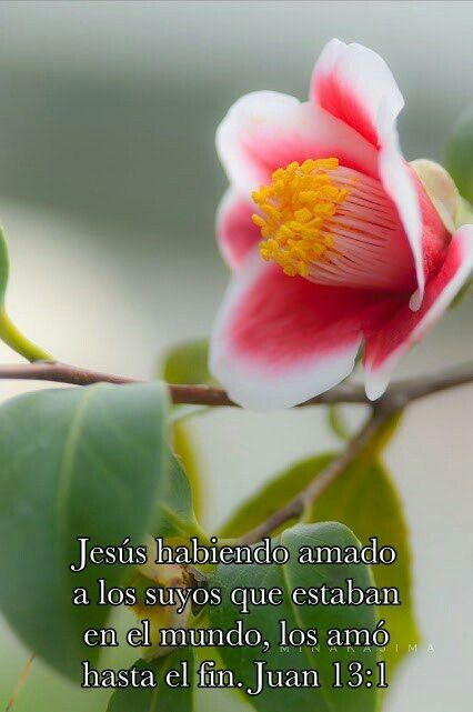 Juan 13:1