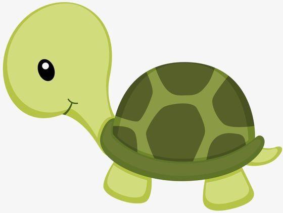 Kleine grüne Schildkröte, Pagina Web, Tortuga De Mar, schöne PNG-Bild und Clipart   – ANIMALES