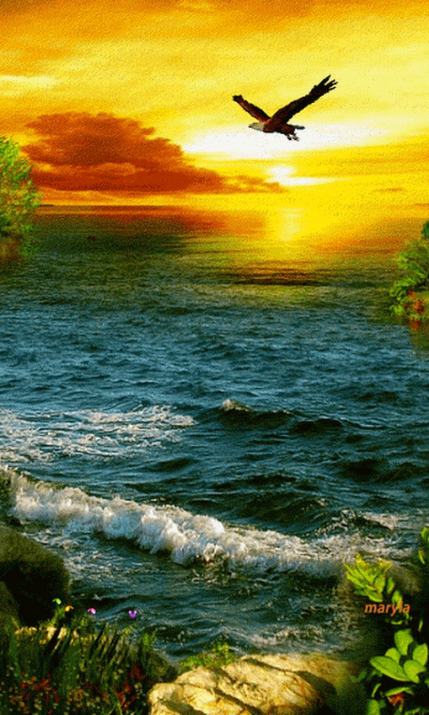 "The sun shines I'm still waiting ... !! - Solange costa ""sol"" silva - Google+"