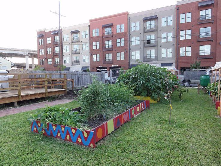 5 Urban Gardening Basics Plants, Perfect plants, Cool plants