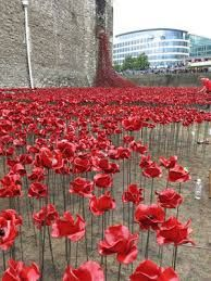 field of poppies tower of london