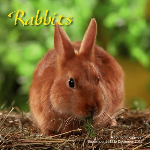 Buy Rabbits 2013 Calendar online at Megacalendars This calendar is multi lingual with the month of the year and day of the week in six languages English French German Italian Spanish and Portuguese Small date grids are included making this calendar .  http://www.megacalendars.com/Rabbits-2013-Calendar-MGANM14_p_13702.html