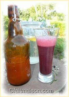 Différentes recettes de kéfir de fruits.