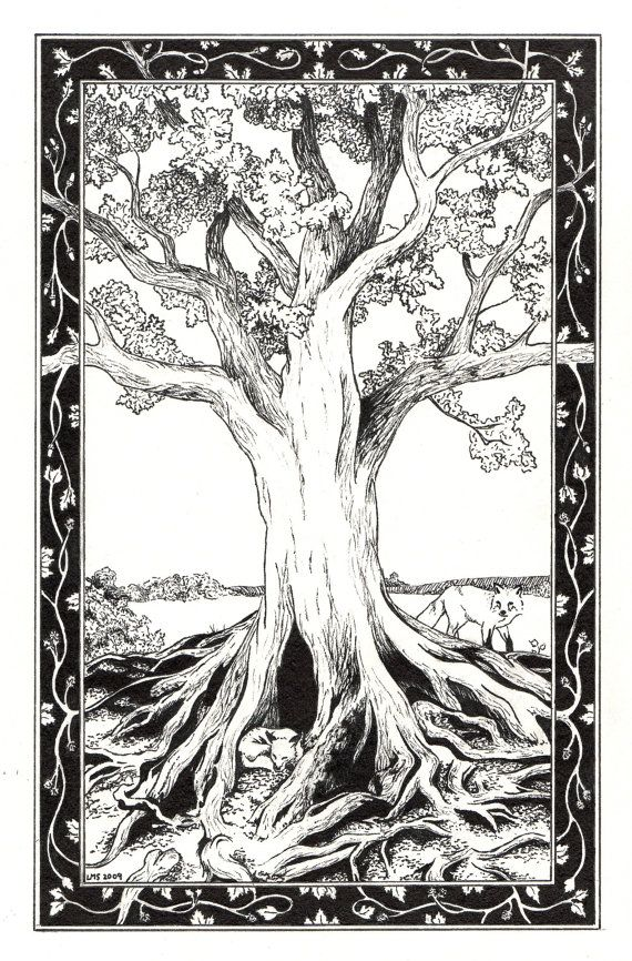 Coloring Pages Of Le Trees : 62 best coloring pages images on pinterest