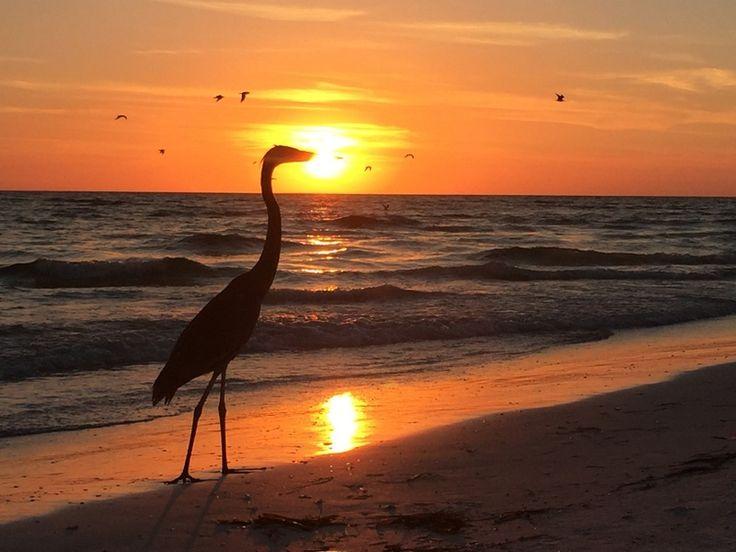 Praias da Flórida: South Lido Beach – Sarasota