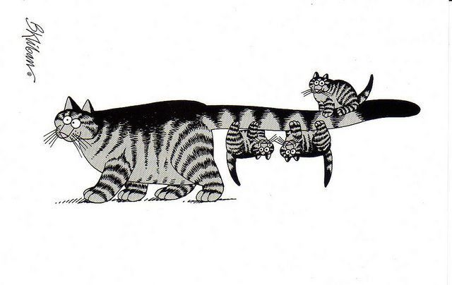 128 Best Kliban S Cats Images On Pinterest Kliban Cat