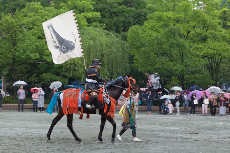 Fliegenschutz auf japanisch
