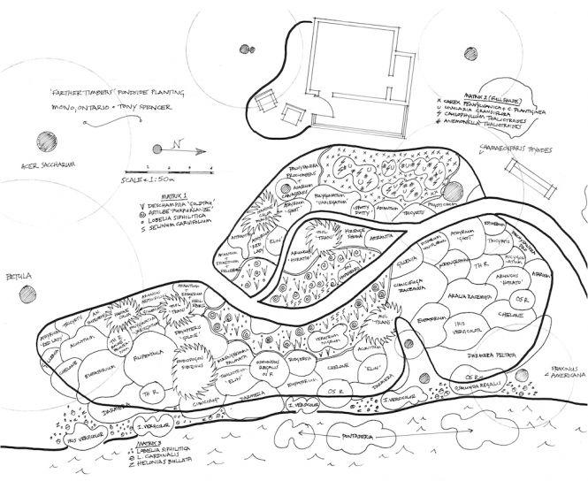 7 best planting plans images on Pinterest Planting Architecture