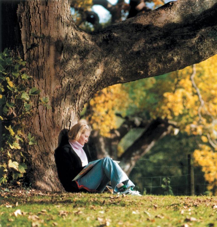 Bath Spa University - The Master of Arts in Travel and Nature Writing, Low Residency
