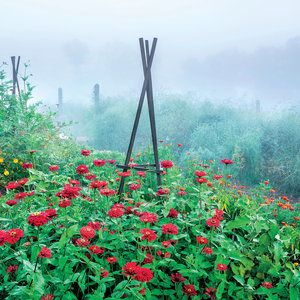 The Secret Veggie Garden | Southern Living P. Allen Smith's Secret Garden Edibles get a bad rap for being unsightly, but P. Allen Smith's Arkansas farm proves these beds can be productive and pretty