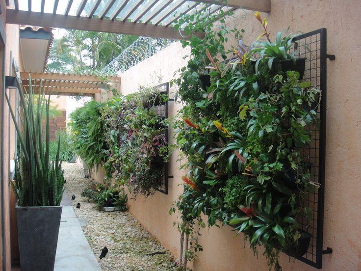 Corredor com jardim suspenso jardinagem pinterest Plantas para paredes verdes