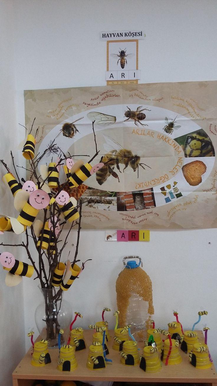 Arı köşesi