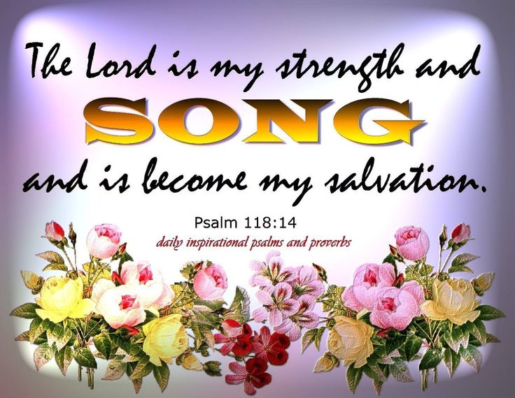 Psalm 118:14  (KJV)   The Lord is my strength and song, and is become my salvation.
