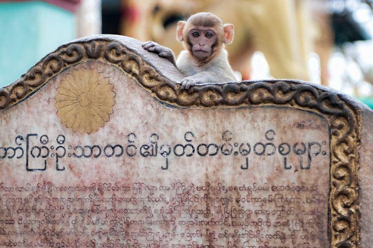 The Undisturbed Beauty of Myanmar - My Modern Metropolis