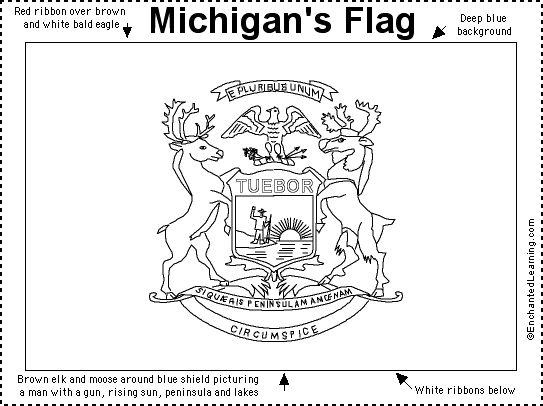 Michigan flag Lesson