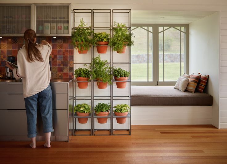 Schiavello's Vertical Garden can be utilised in a kitchen or café space as a place to grow bright blooms, herbs and vegetables.