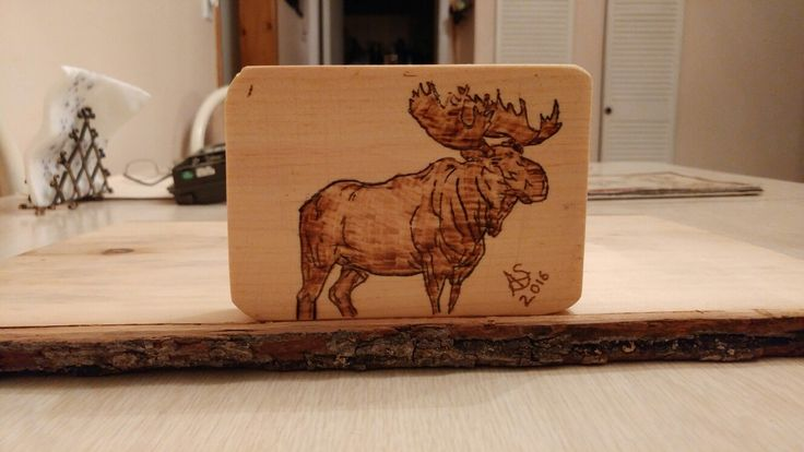 #moose #woodburning #north