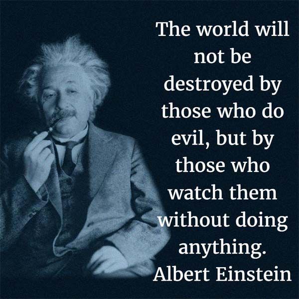 Image result for albert einstein quotes The world will not be destroyed