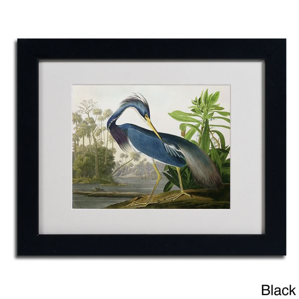 John James Audubon 'Louisiana Heron' Framed Matted Art