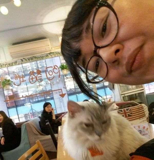I know cat cafes. I've visited a lot. Some have been grand, such as Lady Dinah's Cat Emporium in London. Others, such as Neko Cafe Leon in Yokohama, have been like visiting your kooky uncle's cat-filled rec room. I recently visited Cat Store cat cafe in Causeway Bay, Hong Kong. The trip had a dubious start but …