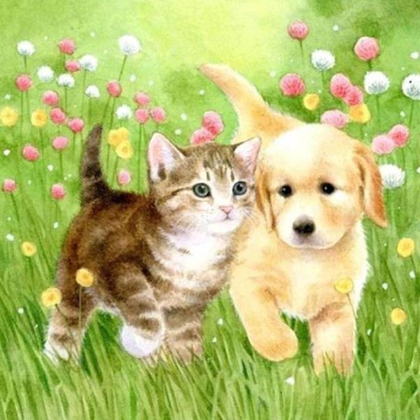 Kittens And Puppies Desktop Free Desktop Sleeping Kitten Cute Animals Puppies Puppy Dog Photos